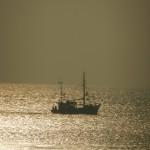 Fischkutter im Gegenlicht auf Borkum 2012