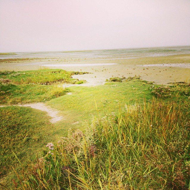 Wattenmeer - Oh Watt'n'Meer