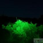 LED Lenser T2 QC