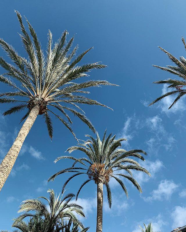 Gran Canaria, die 10te